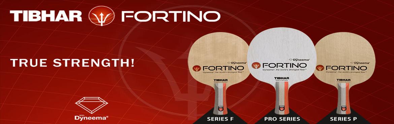 Banner_Fortino